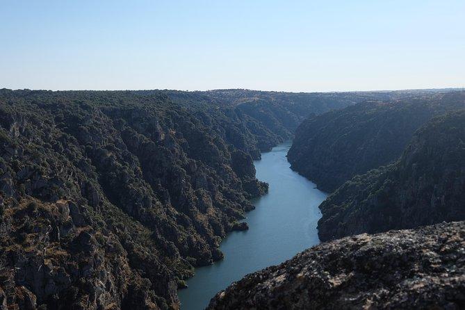 Oriolus Tour - Douro, Côa, Távora, Varosa - 4 Rivers