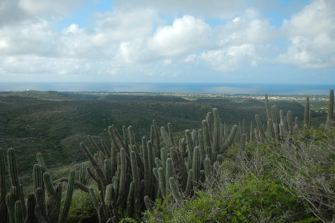 Private hike & snorkel tour to Aruba's highest point & Mangel Halto reef