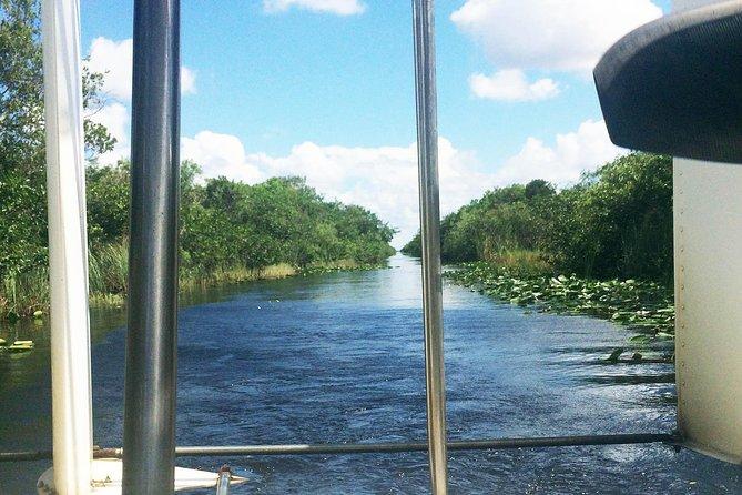 Roundtrip transfer from Miami Beach to Gator Park