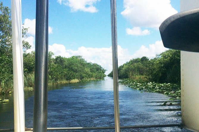 Roundtrip transfer from Miami Beach to Everglades Alligator Farm photo 6