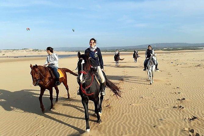 Horse riding on the beach of Essaouira 2 hours