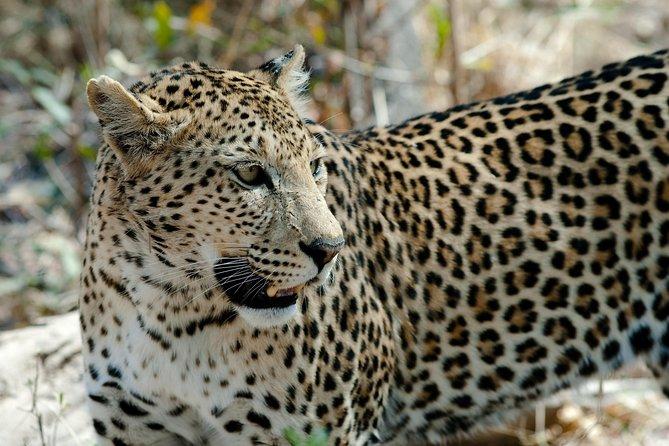 3 Days Lake Nakuru Safari