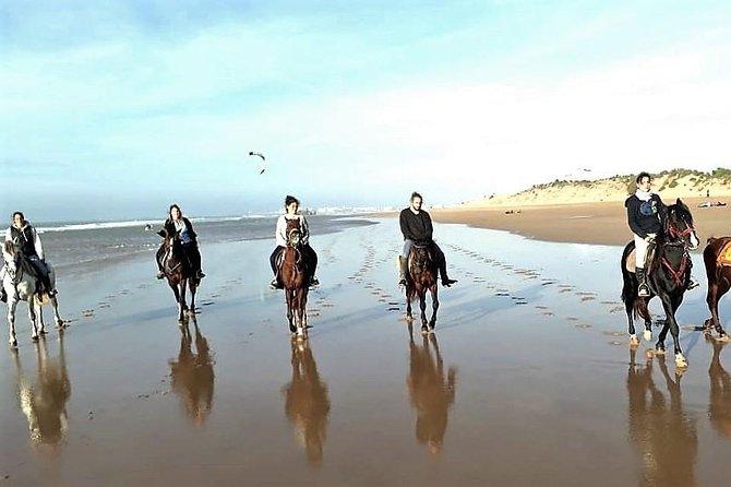 Horse riding on the beach of Essaouira 3 hours