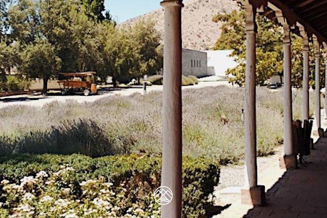 Viñas Concha y Toro e Santa Rita (grupos pequenos de até 7 turistas por carro)