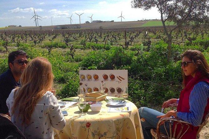 Full Day Sherry Wine Experience from Malaga
