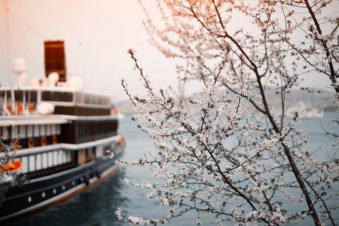 Private Transfer-Prague to River Cruise Dock Nuremberg: Port / Harbor transport