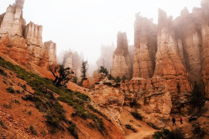 Explore Bryce Canyon & Zion National Park Utah from Las Vegas Day Tour