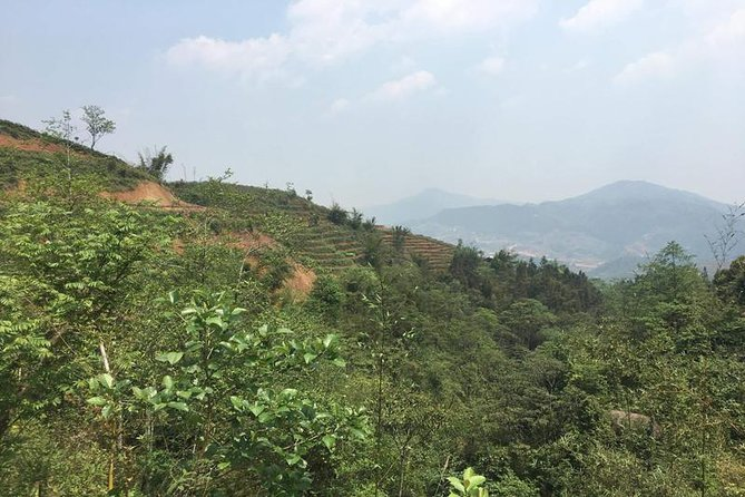 Mountain and Rice Terreces ( Hard Trek- T1A)