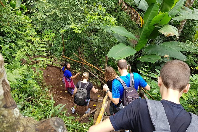 Private Tour: Doi Inthanon National Park & Hiking