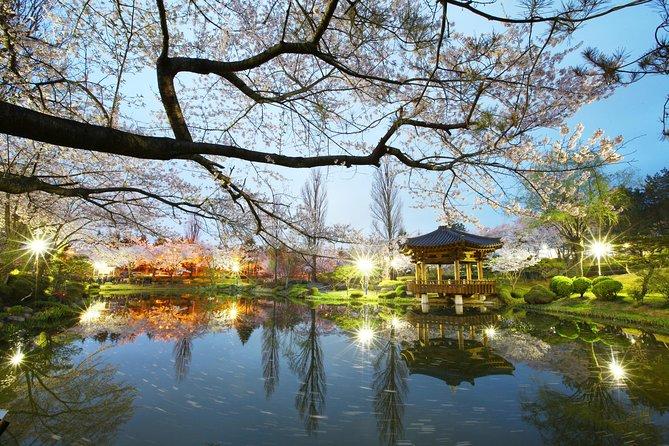 Spring 5 days Cherry Blossom Jeju&Busan&Jinhae&Gyeongju on 31 Mar to 10 Apr