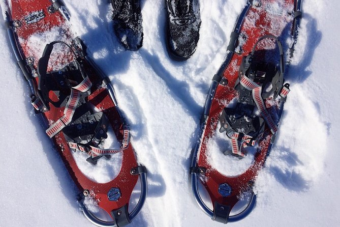 ENJOY THE ARCTIC THE LAPPISH WAY - Snowmobile, Ice Fishing & Snowshoeing