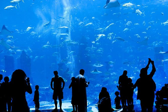 Grand Aquarium from Hurghada