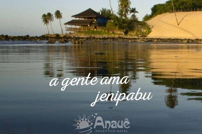 Passeio a Praia de Jenipabu