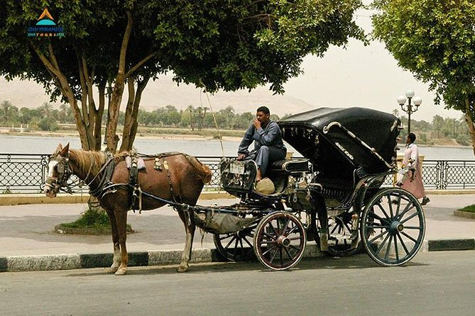 Luxor City Tour By Horse Carriage From West Bank photo 2