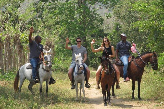 Eco-Tour a cavalo