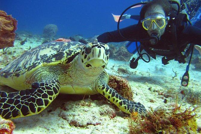 Scuba diving Cancun