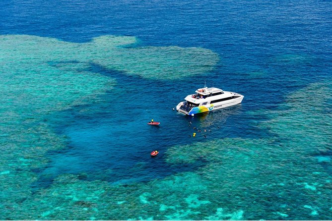 Full Day Snorkel In The Great Barrier Reef photo 7