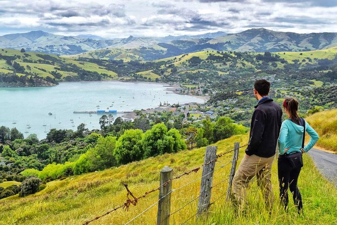 Full-Day Private Sightseeing Tour Lyttelton Akaroa Christchurch