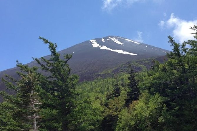 Mt. Fuji & Hakone Tour With Muslim-friendly Lunch (Return by Bullet Train) photo 8