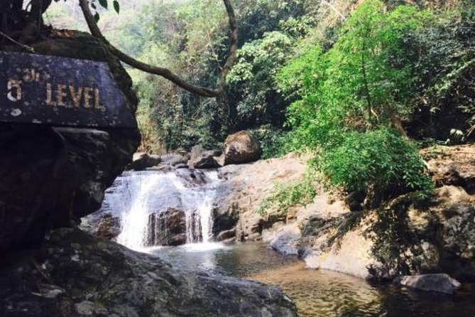 Private Tour: Pala U Waterfall & Kaeng Krachan Jungle photo 3
