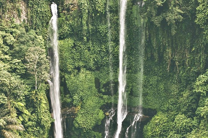 Tallest Waterfalls of Bali & Water Temple Tour (with Lunch)