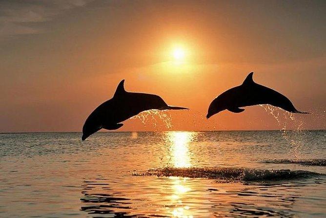 Lovina Dolphin & Batur Volcano Tour