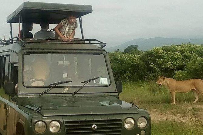 3 Days Masai Mara Game Reserve Safari