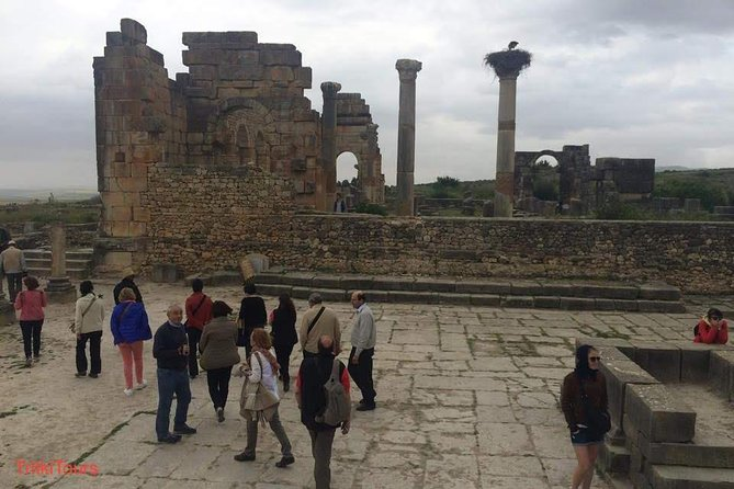 day trip fes to volubilis and meknes