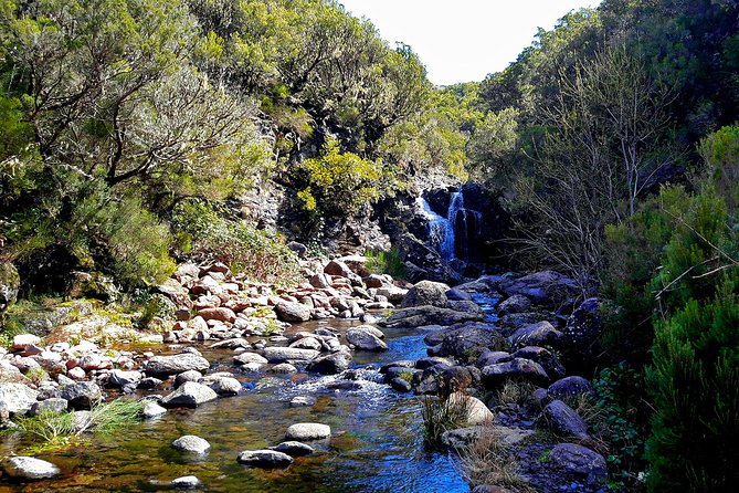 Lakes of Madeira Levada Walk from Funchal photo 3