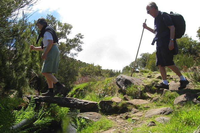 Lakes of Madeira Levada Walk from Funchal photo 6