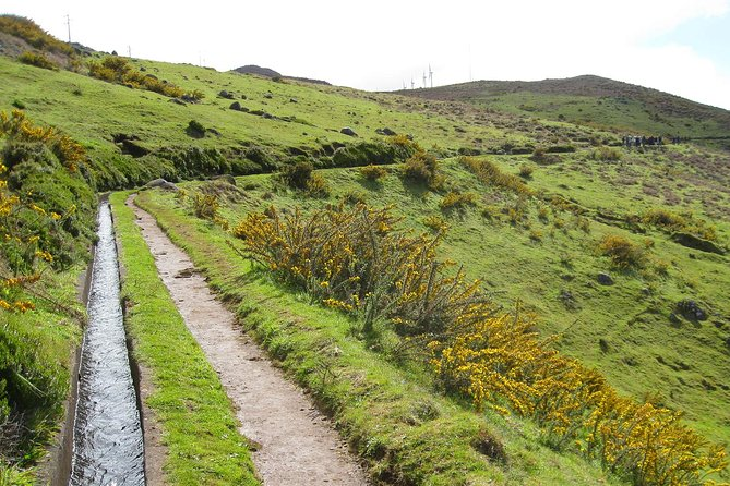 Lakes of Madeira Levada Walk from Funchal photo 4