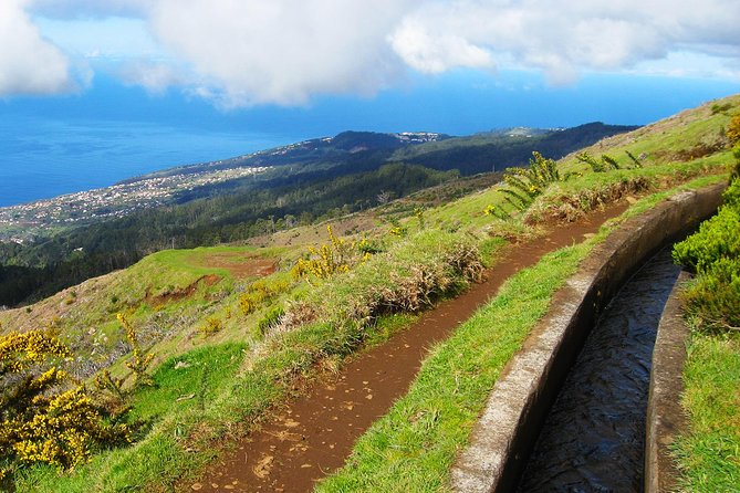 Lakes of Madeira Levada Walk from Funchal photo 7