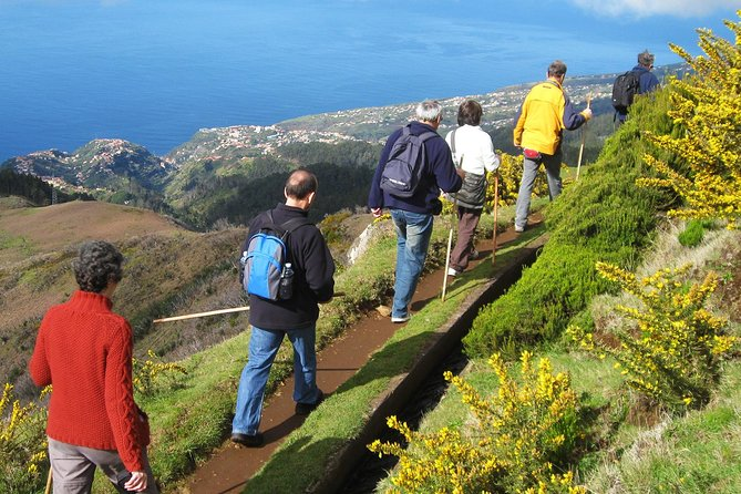 Lakes of Madeira Levada Walk from Funchal photo 10