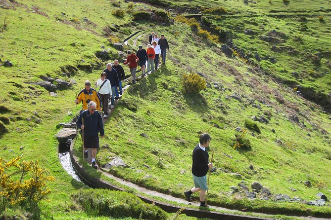 Lakes of Madeira Levada Walk from Funchal photo 2