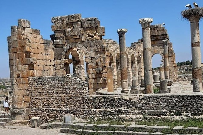 Road Trip to The Roman ruins and Meknes