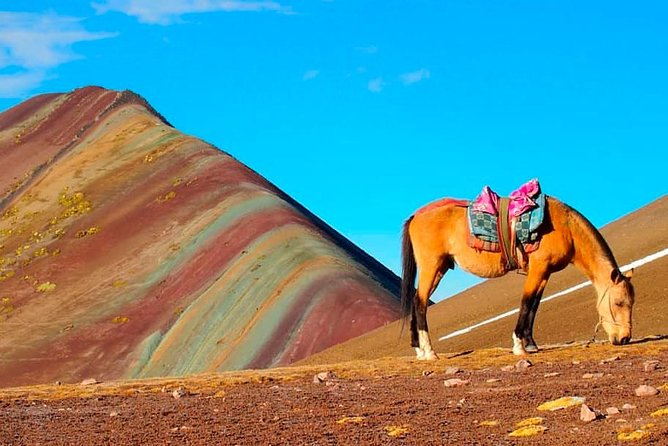 The Rainbow Mountain Vinicunca in Horse, Private Service, One day - Peru Vip