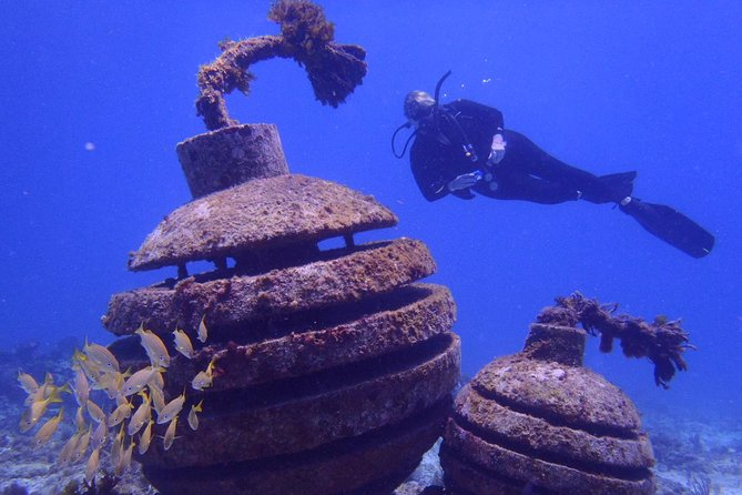 2 Tank Dive at MUSA - The Underwater Museum Reservation photo 1