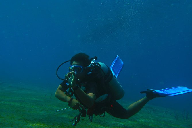 1 DIVE in Amed or Tulamben per person (certified divers only)