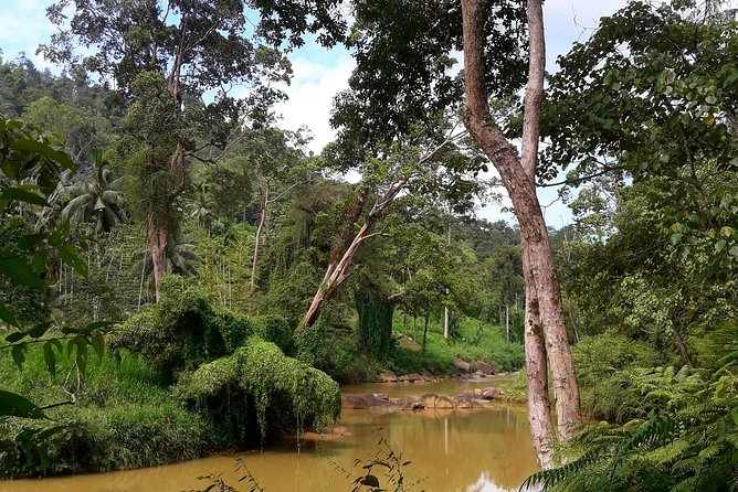 Traditional village and nature tour
