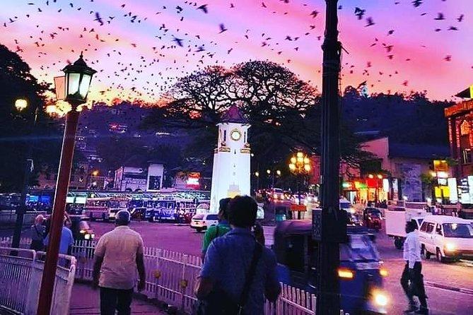 Kandy one day trip