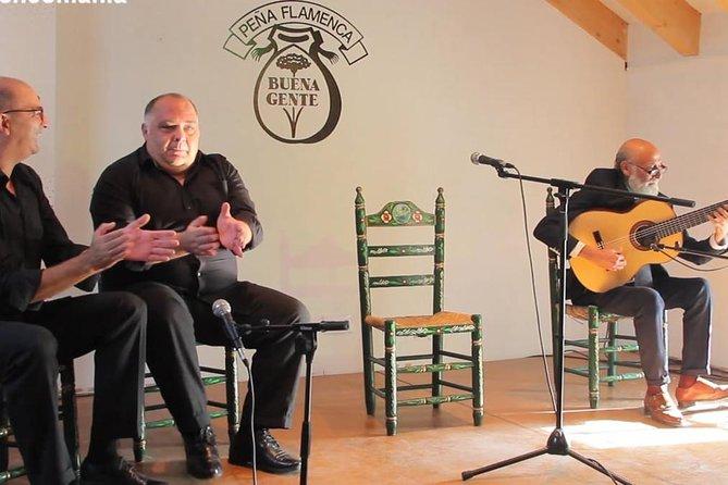 From Cádiz: Private Flamenco Experience, the life of a 'Bailaora'