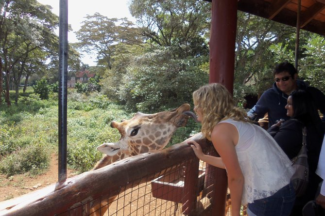Day tours to David Sheldrick,Giraffe centre and Karen Blixen photo 1
