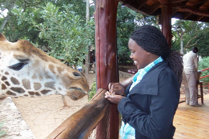 Day tours to David Sheldrick,Giraffe centre and Karen Blixen photo 4