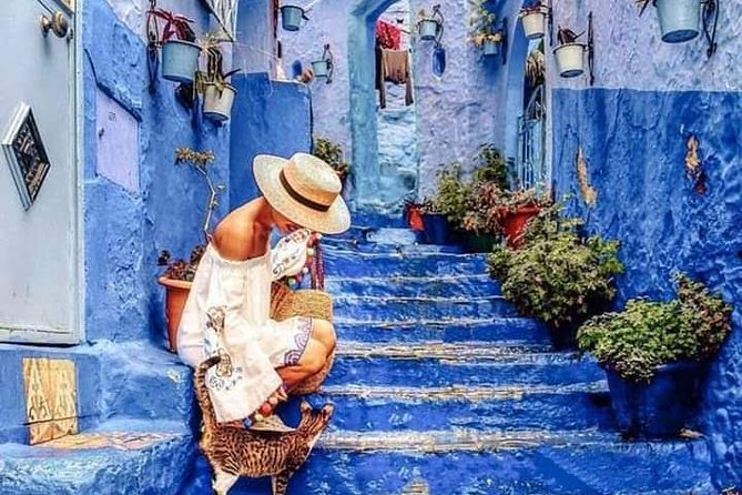 Fez Medina, Chechaouen and Akchour tour