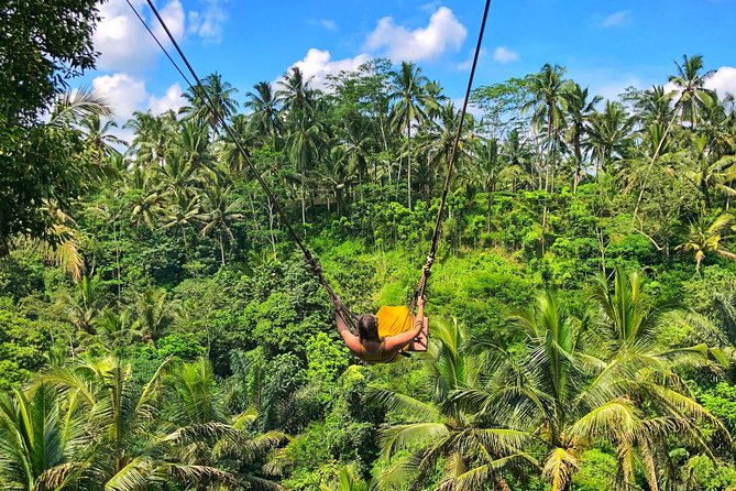 Bali Swing photo 6