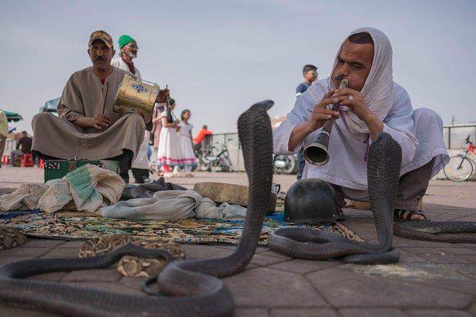 Essential Morocco Cultural Tour