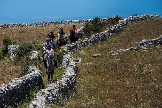 Horse riding on the trails of Serras de Aire and Candeeiros Natural Park
