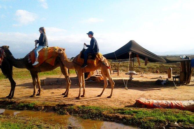 Bedste heldags kulturrejse til Atlasbjergene fra Marrakech
