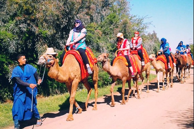 Atlas mountains day trip from Marrakech with camel ride