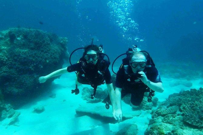 Try Scuba Diving with BALI DIVING at Padang Bai